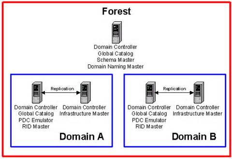 Forest and domain level FSMO roles